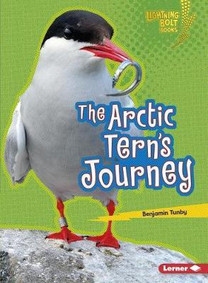 Arctic Tern's Journey by Benjamin Tunby