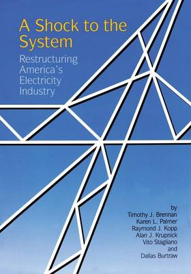 A Shock to the System by Timothy J. Brennan