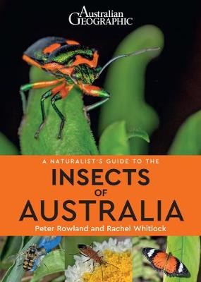 A A Naturalist's Guide to the Insects of Australia by Peter Rowland