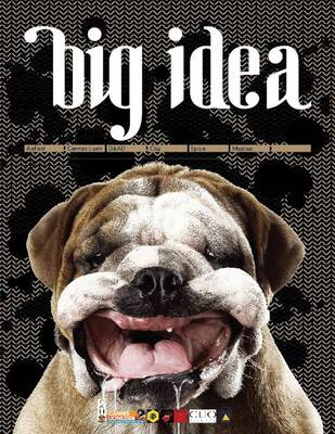 Big Idea book