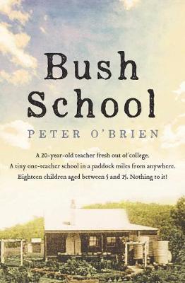 Bush School book