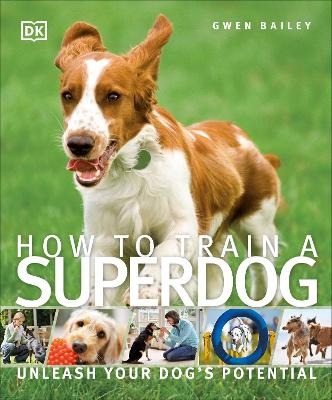How To Train A Superdog by Gwen Bailey