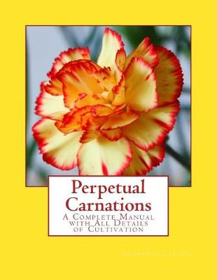 Perpetual Carnations by Laurence J Cook