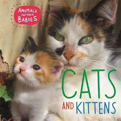 Animals and their Babies: Cats & kittens by Annabelle Lynch