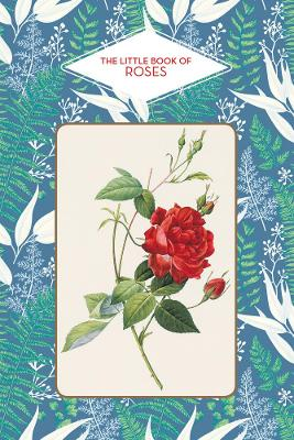 The Little Book of Roses by Michel Beauvais