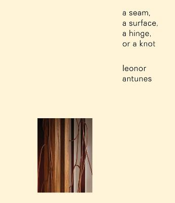 Leonor Antunes: a seam, a surface, a hinge, or a knot book