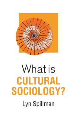 What is Cultural Sociology? book