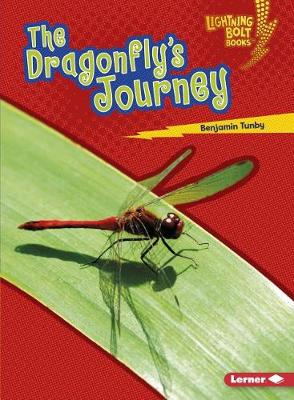 The Dragonfly's Journey by Benjamin Tunby