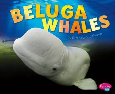 Beluga Whales book