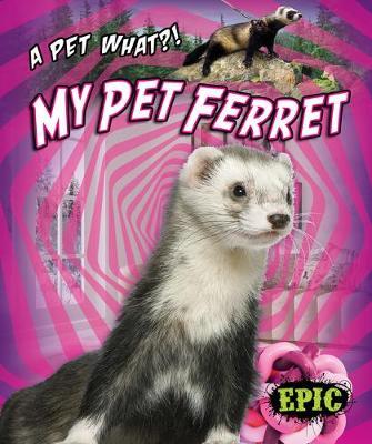 My Pet Ferret by Paige V Polinsky