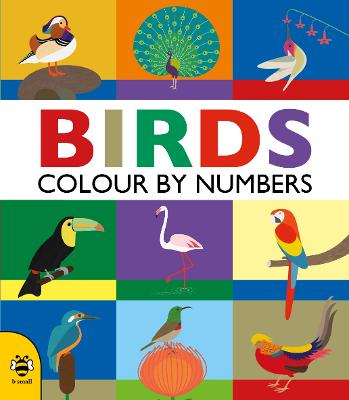 Birds (Colour by Numbers) by Sam Hutchinson