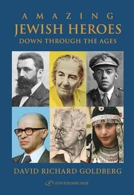 Amazing Jewish Heroes by David Richard Goldberg