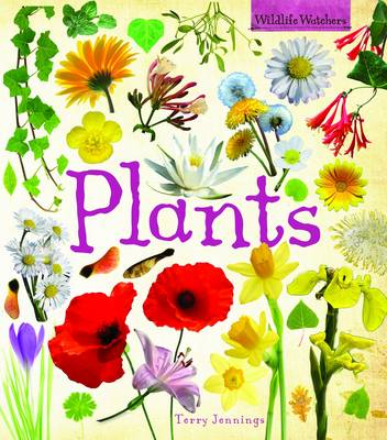 Plants by Terry Jennings