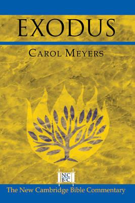 Exodus by Carol L. Meyers