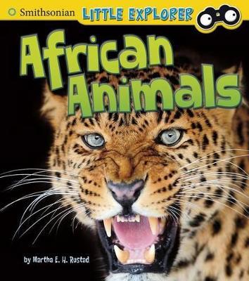African Animals by Martha E H Rustad