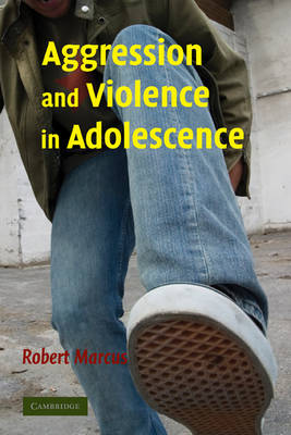 Aggression and Violence in Adolescence book