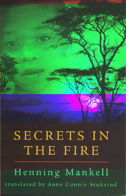 Secrets in the Fire book