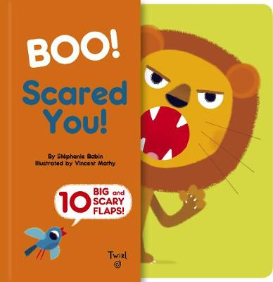 Boo! Scared You! book