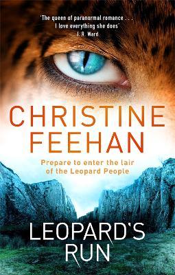 Leopard's Run book