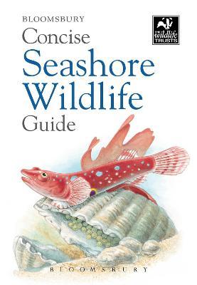 Concise Seashore Wildlife Guide by Bloomsbury