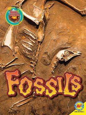 Fossils by Megan Lappi