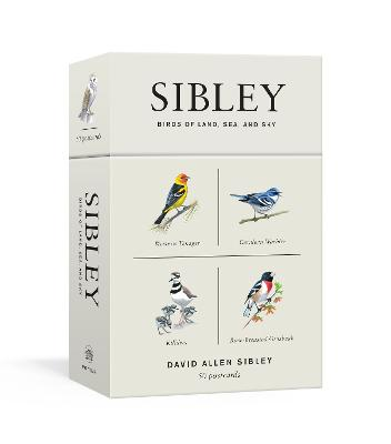 Sibley Birds Of Land, Sea, And Sky book