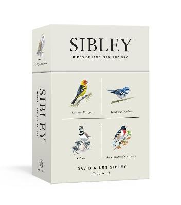Sibley Birds Of Land, Sea, And Sky by David Allen Sibley