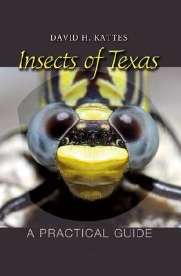 Insects of Texas by