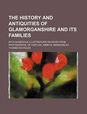 The History and Antiquities of Glamorganshire and Its Families; With Numerous Illustrations on Wood from Photographs, of Castles, Abbeys, Mansions &C by Thomas Nicholas