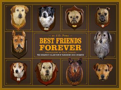 Best Friend Forever by J.D. Powe