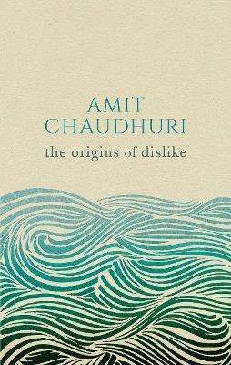 Origins of Dislike by Amit Chaudhuri