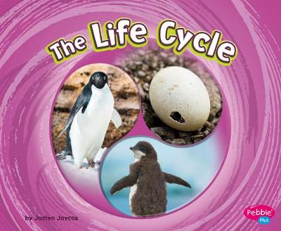 The Life Cycle by Jaclyn Jaycox