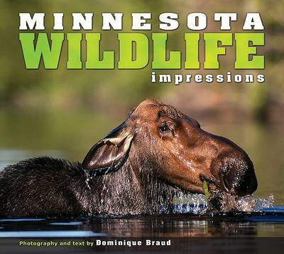 Minnesota Wildlife Impressions book