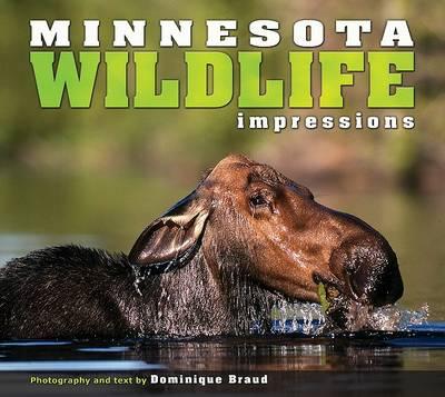 Minnesota Wildlife Impressions book