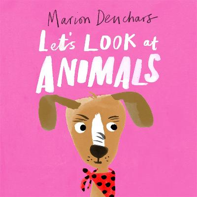 Let's Look at... Animals: Board Book book