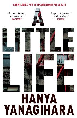 Little Life book