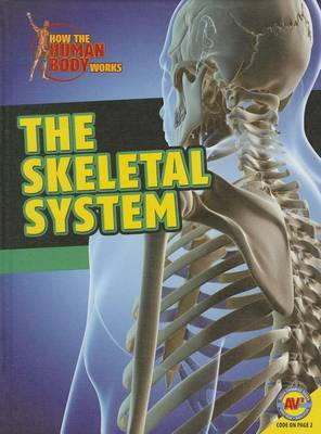 Skeletal System by Simon Rose