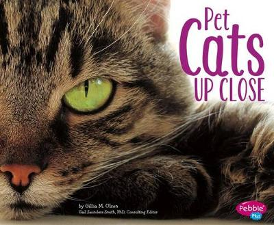 Pet Cats Up Close by Gillia M. Olson