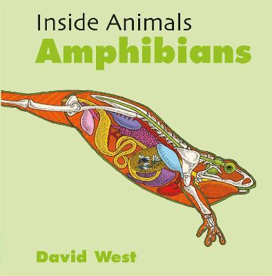 Amphibians by David West