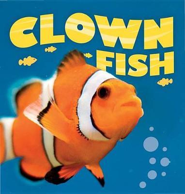 Clownfish by Camilla De La Bedoyere