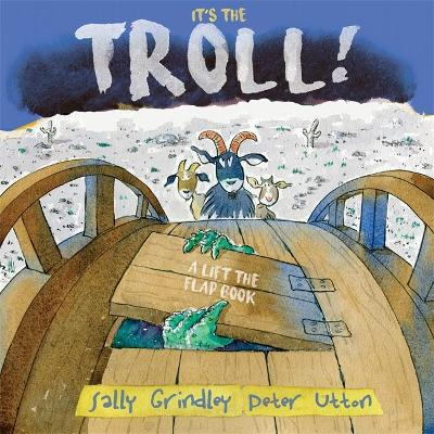 It's the Troll by Sally Grindley