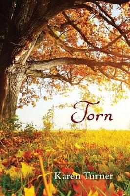 Torn by Karen Turner