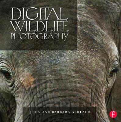 Digital Wildlife Photography by John Gerlach