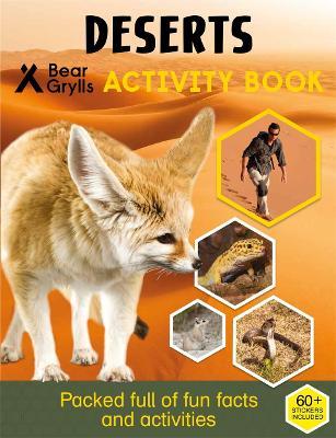 Bear Grylls Sticker Activity: Desert by Bear Grylls