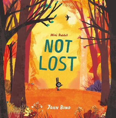 Mini Rabbit Not Lost Picture Book No. 1 by John Bond