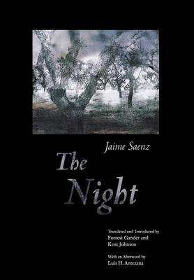The Night by Jaime Saenz