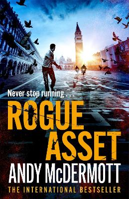 Rogue Asset by Andy McDermott