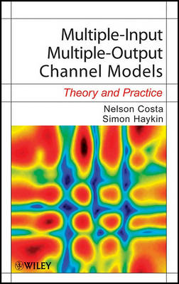 Multiple-Input Multiple-Output Channel Models by Nelson Costa