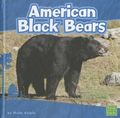 American Black Bears by Molly Kolpin