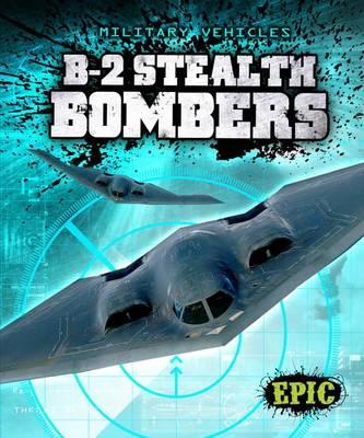 B-2 Stealth Bombers by Denny Von Finn